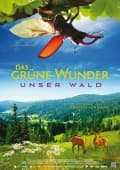 Unser Wald - Das grne Wunder